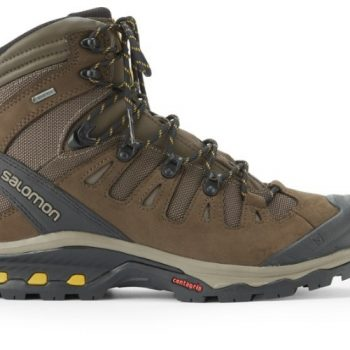 https://www.rei.com/product/127770/salomon-quest-4d-3-gtx-hiking-boots-mens